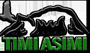 TIMI ASIMI – Inuusuttut pillugit